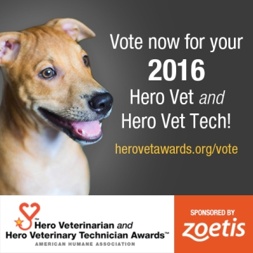 Hero Vet Awards voting graphic